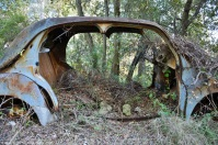 ranwhenparked-renault-4cv-woods-5