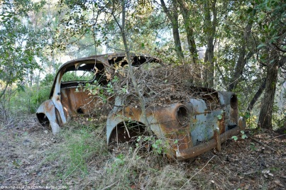 ranwhenparked-renault-4cv-woods-6