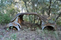 ranwhenparked-renault-4cv-woods-8