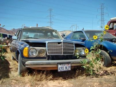 ranwhenparked-utah-junkyard-mercedes-w123-3
