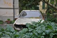ranwhenparked-peugeot-505-1