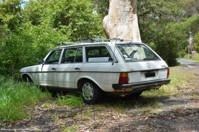 ranwhenparked-mercedes-benz-300td-1