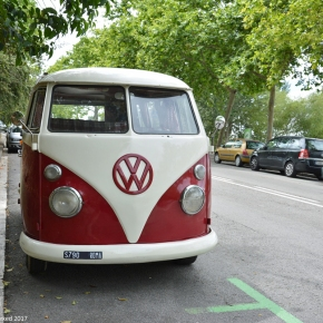 Driven daily: Volkswagen Bus