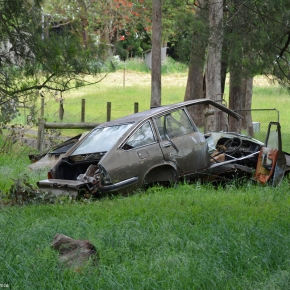 Rust in peace: a Lancia nest in Australia