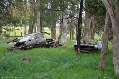 ranwhenparked-lancia-beta-rust-in-peace-australia